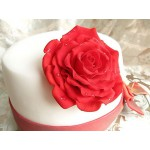 РМ 4 Торт белый с красной розой
