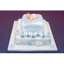 СМ 15 Торт с новорожденным