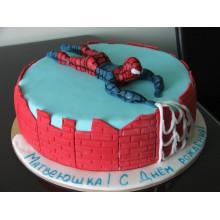 ДТ 201 Торт с человеком пауком