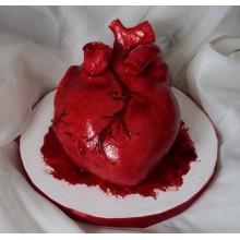 ПР 4 Торт сердце анатомическое