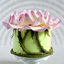 РМ 01 Торт загадочный цветок джуманджи