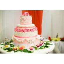 CВ 360 Нежный торт