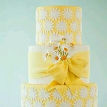 ПР 225 Торт солнечный